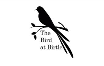 The Bird at Birtle