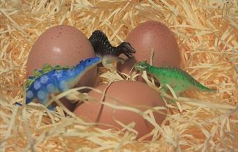 Eggs with some toy dinosaurs.